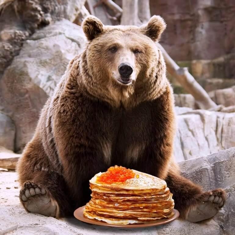 Комоедица - праздник, связанный с медведями
