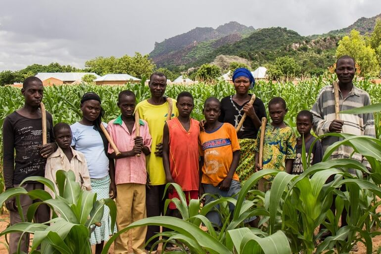 Основное занятие игбо - земледелие