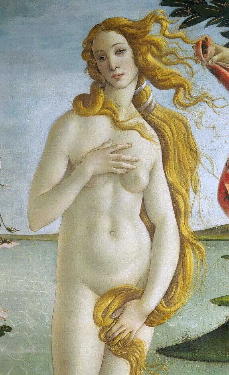 Венера. Фрагмент картины