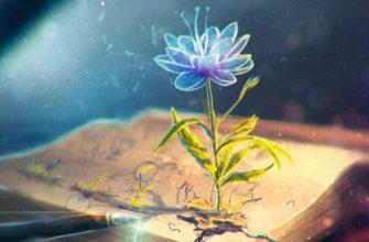 Акмеизм — поэзия цветущей жизни