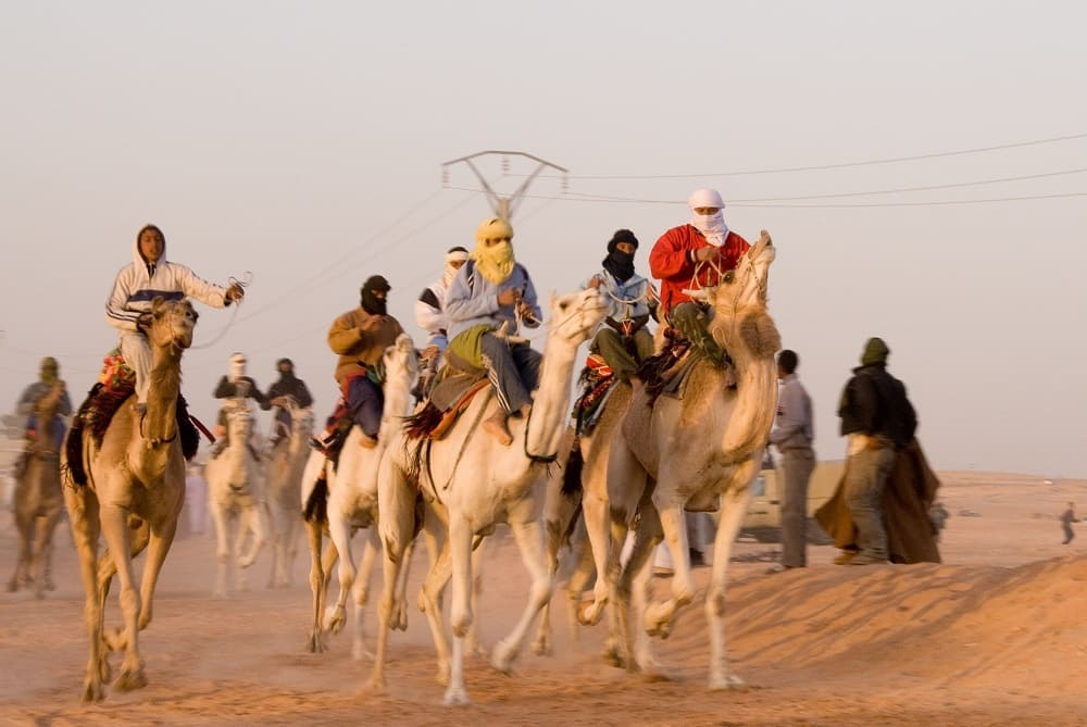 Скачки на верблюдах / © WikimediaImages / Pixabay