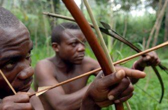 Пигмеи из деревни Мбау Микереба в республике Конгo