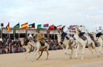 Традиции тунисцев
