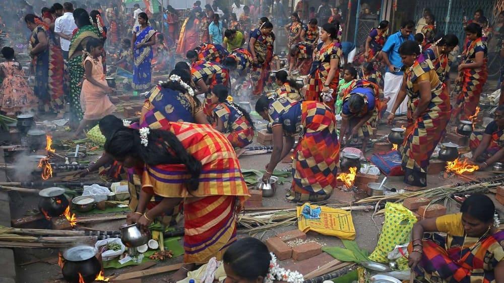 Понгал в южная Индия / dnaindia.com