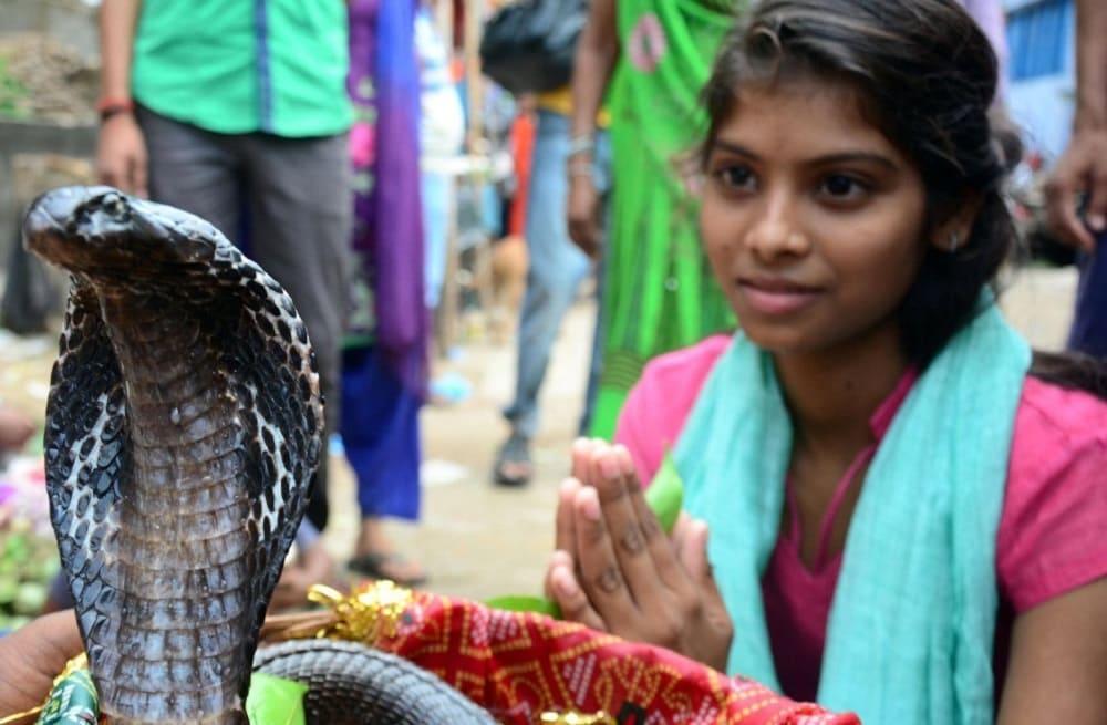 Змеям молятся с надеждой