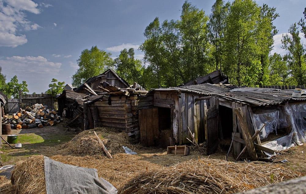 Если во дворе нет порядка, Дворовой ещё и пыли неметёт, чтобы заставить хозяев прибраться / © Victar Strybuk (Svikt) / rasfokus.ru