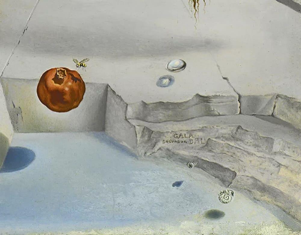 Гранат. Фрагмент картины Сальвадора Дали «Сон, вызванный полетом пчелы вокруг граната, за секунду до пробуждения»