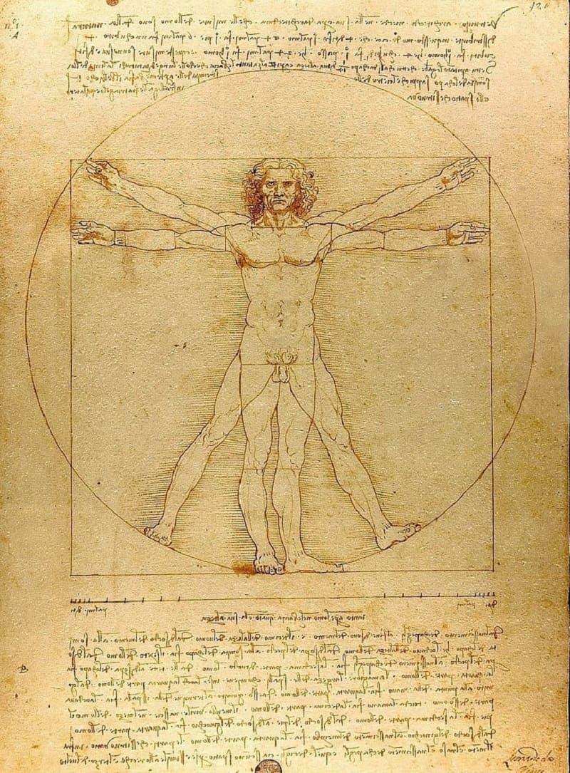 Леонардо да Винчи «Витрувианский человек», 1492 год, Местонахождение: Галерея Академии, Венеция, Италия