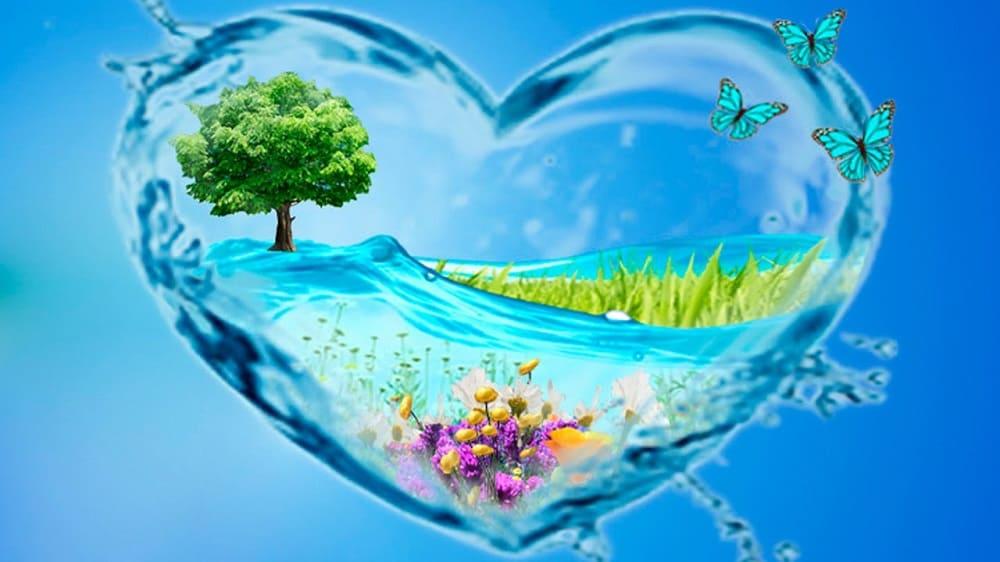 Любая вода - это сокровище / ks-region69.com