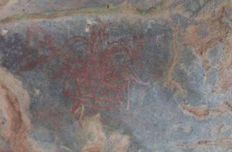 Петроглифы, обнаруженные на участке Мангербани / indianexpress.com