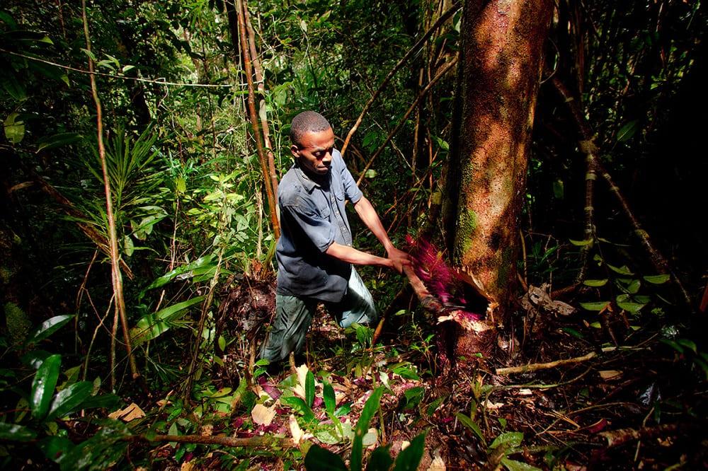 Так же усердно работал в прадавние времена Аду-Огинае / © Toby Smith / tobysmith.com