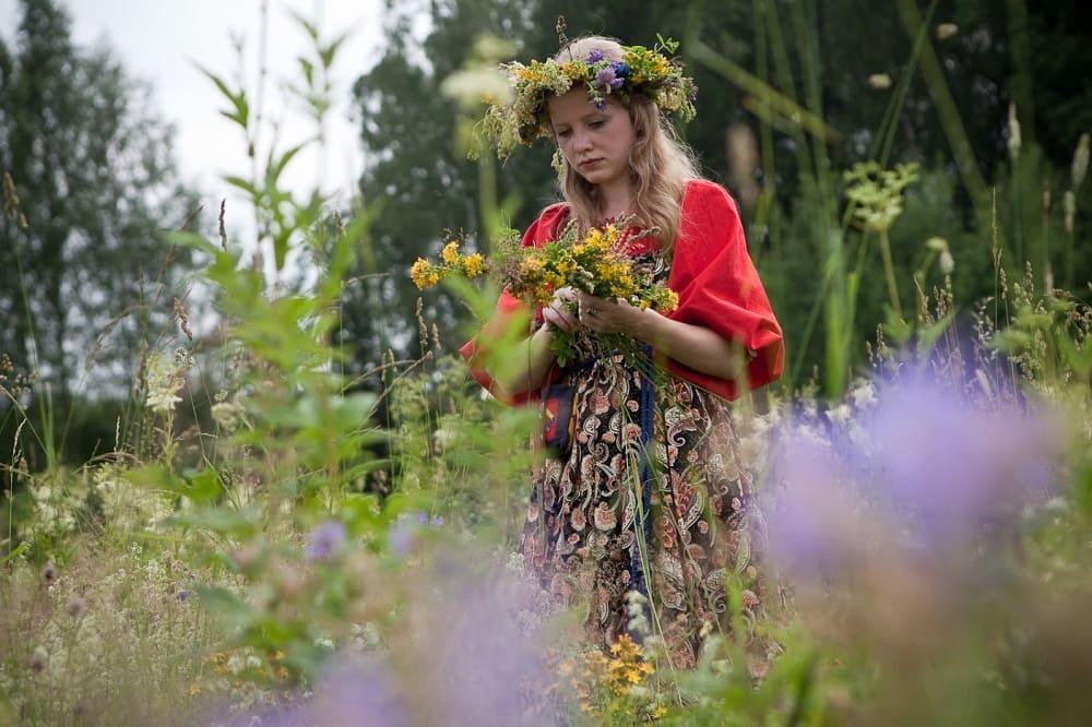 Травы в день Аграфены Купальницы имеют особую силу / studopedia.ru