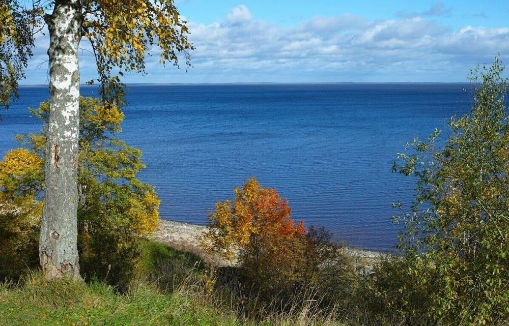 Озеро Ильмень - классический образец красоты природы русской земли / oir.mobi