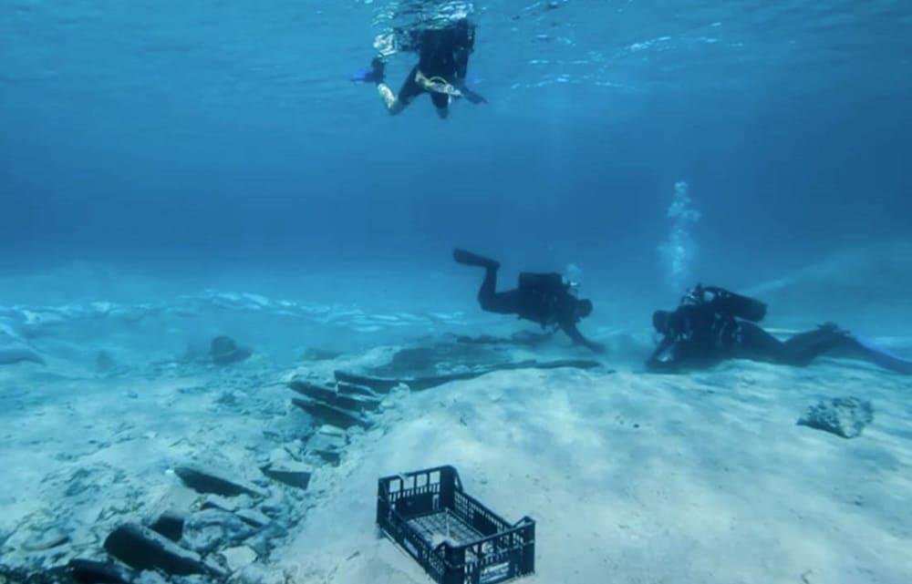 Древнейшее сохранившееся судно в мире \ morski.hr