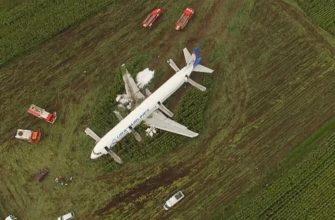 В России приступили к написанию сценария к фильму о героической посадке самолета на кукурузное поле